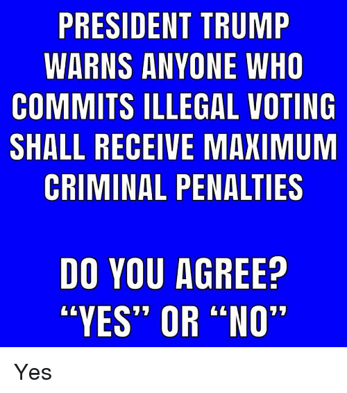 """yes or no: PRESIDENT TRUMP  WARNS ANYONE WHO  COMMITS ILLEGAL VOTING  SHALL RECEIVE MAXIMUM  CRIMINAL PENALTIES  DO YOU AGREE?  """"YES"""" OR """"NO"""" Yes"""