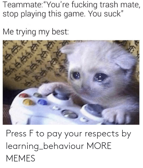 Pay: Press F to pay your respects by learning_behaviour MORE MEMES