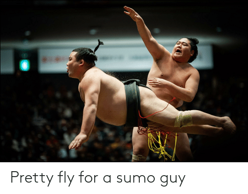 sumo: Pretty fly for a sumo guy