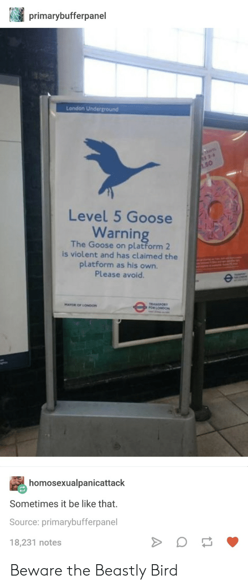 Beastly: primarybufferpanel  London Underground  50  Level 5 Goose  Warnin  The Goose on platform 2  is violent and has claimed the  platform as his own.  Please avoid  TRANSPORT  FOR LONDON  MAYOR OF LONIO  homosexualpanicattack  Sometimes it be like that.  Source: primarybufferpanel  18,231 notes Beware the Beastly Bird