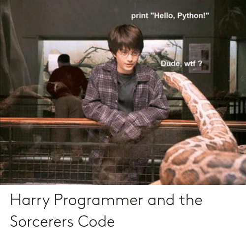 Print Hello Python! Dude Wtf ? Harry Programmer and the