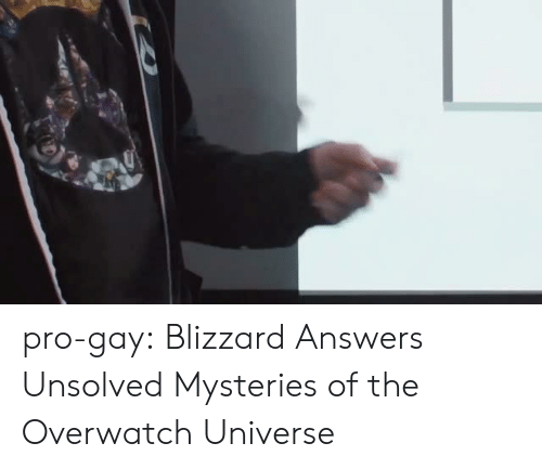 Tumblr, youtube.com, and Blizzard: pro-gay:   Blizzard Answers Unsolved Mysteries of the Overwatch Universe