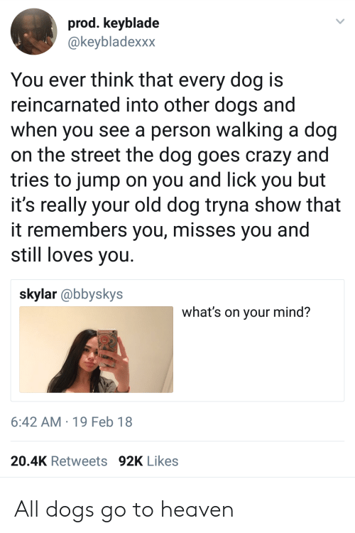 Crazy, Dogs, and Heaven: prod. keyblade  @keybladexxx  You ever think that every dog is  reincarnated into other dogs and  when you see a person walking a dog  on the street the dog goes crazy and  tries to jump on you and lick you but  it's really your old dog tryna show that  it remembers you, misses you and  still loves you  skylar @bbyskys  what's on your mind?  6:42 AM 19 Feb 18  20.4K Retweets 92K Likes All dogs go to heaven