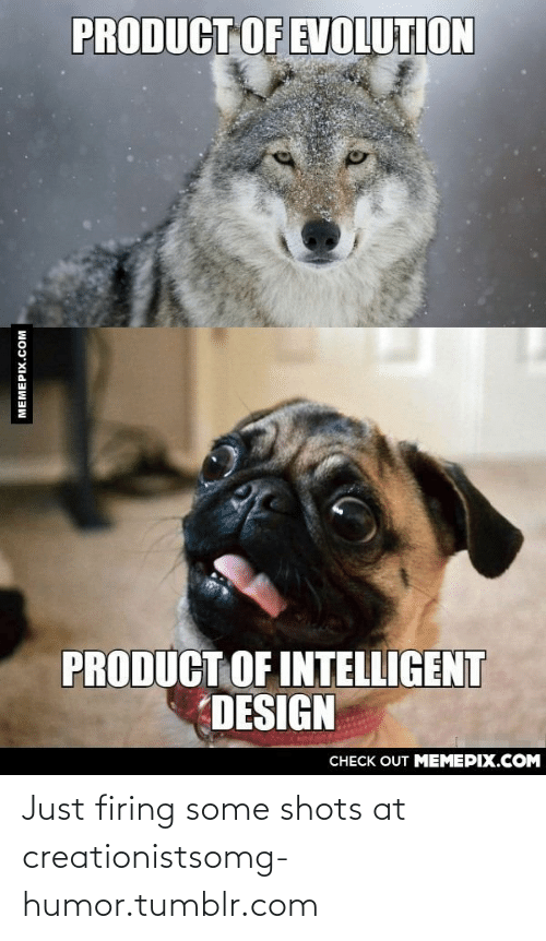 Omg, Tumblr, and Evolution: PRODUCT OF EVOLUTION  PRODUCT OF INTELLIGENT  DESIGN  СНЕCK OUT MЕМЕРIХ.COM  MEMEPIX.COM Just firing some shots at creationistsomg-humor.tumblr.com