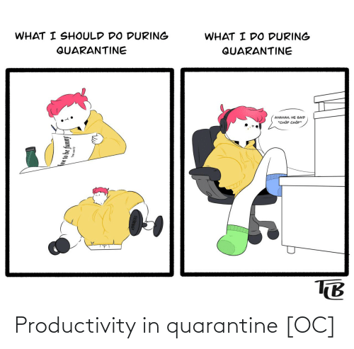 productivity: Productivity in quarantine [OC]