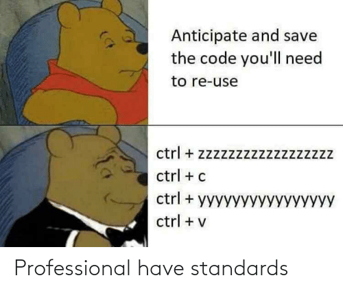 professional: Professional have standards