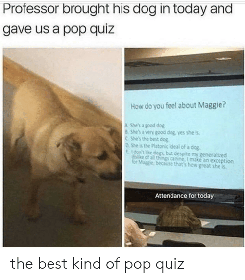 Dogs, Pop, and Best: Professor brought his dog in today and  gave us a pop quiz  How do you feel about Maggie?  A She's a good dog  8 She's a very good dog, yes she is  CShe's the best dog  DShe is the Platonic ideal of a dog.  E16on't ke dogs but despite my generalized  disike of all things canine, I make an exception  for Maggie, because that's how great she is  Attendance for today the best kind of pop quiz