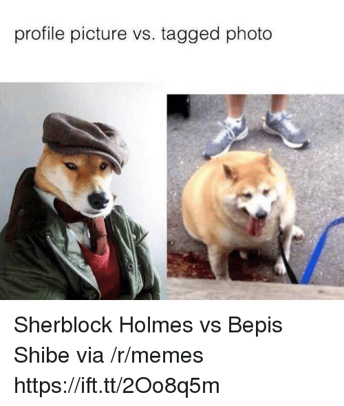 Memes, Tagged, and Via: profile picture vs. tagged photo Sherblock Holmes vs Bepis Shibe via /r/memes https://ift.tt/2Oo8q5m