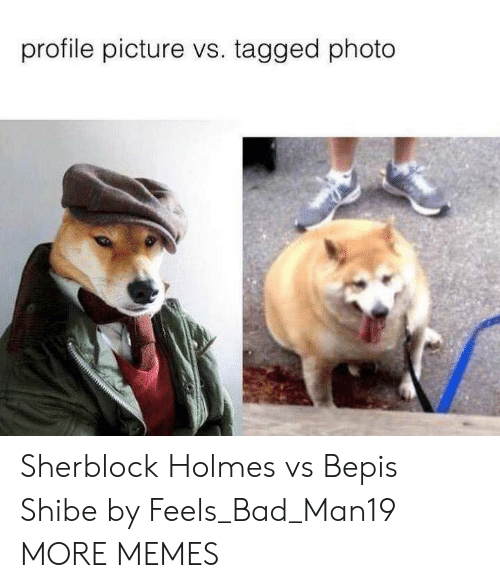 Feels Bad: profile picture vs. tagged photo Sherblock Holmes vs Bepis Shibe by Feels_Bad_Man19 MORE MEMES