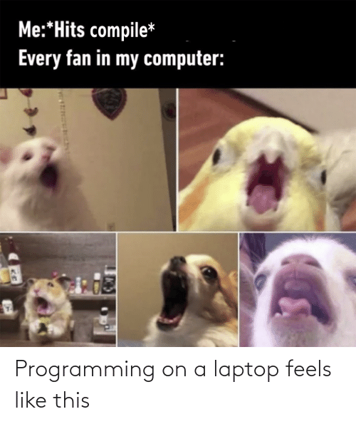 Programming: Programming on a laptop feels like this