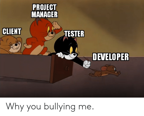 PROJECT MANAGER CLIENT TESTER DEVELOPER Why You Bullying Me | Programmer Humor Meme on awwmemes.com