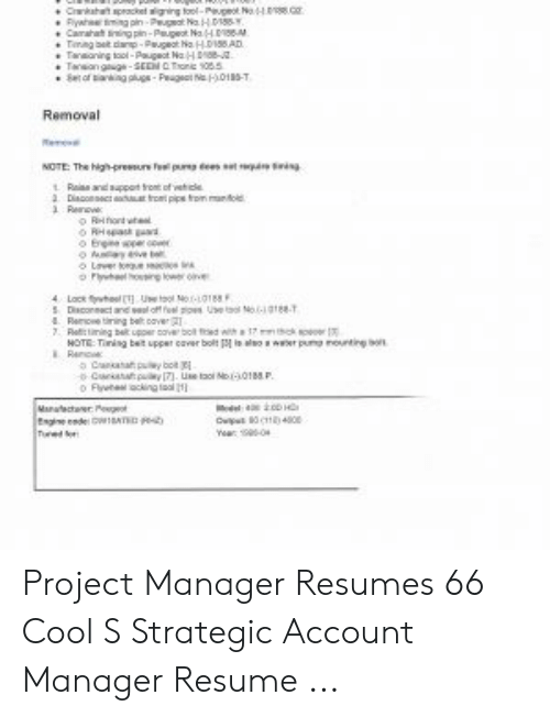 Project Manager Resumes 66 Cool S Strategic Account Resume