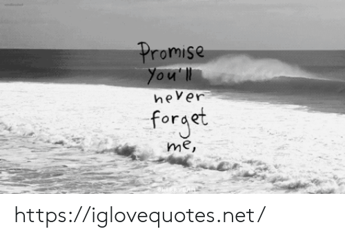 Net, Href, and  Promise: Promise  You'll  hever  forget  me, https://iglovequotes.net/