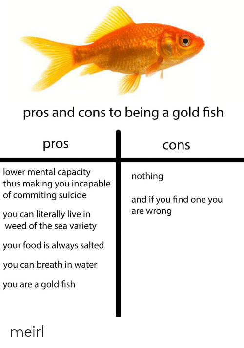 thus: pros and cons to being a gold fish  pros  cons  lower mental capacity  thus making you incapable  of commiting suicide  nothing  and if you find one you  are wrong  you can literally live in  weed of the sea variety  your food is always salted  you can breath in water  you are a gold fish meirl
