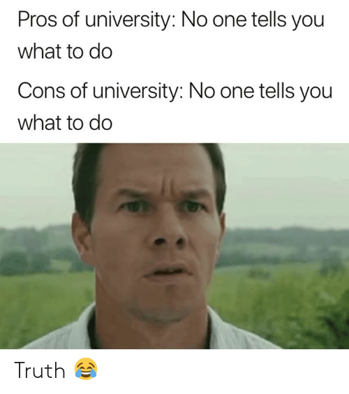 Truth, University, and One: Pros of university: No one tells you  what to do  Cons of university: No one tells you  what to do Truth 😂