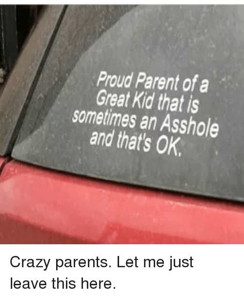 Crazy, Parents, and Reddit: Proud Parent of a  Great Kid that is  sometimes an Asshole  and that's OK Crazy parents. Let me just leave this here.