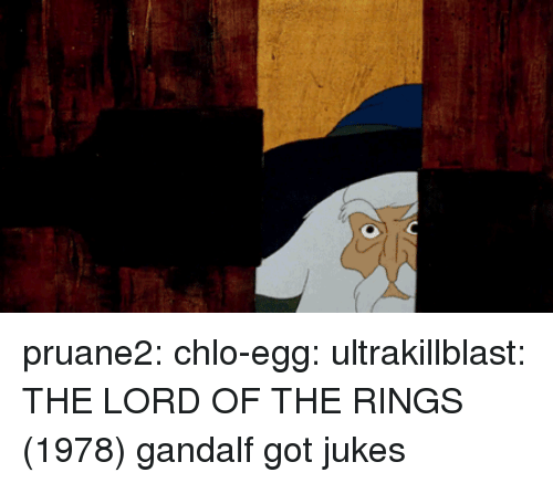 Lord of the Rings: pruane2: chlo-egg:  ultrakillblast: THE LORD OF THE RINGS (1978) gandalf got jukes