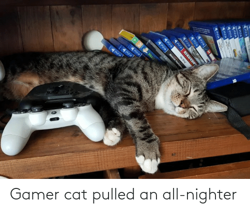 pia: PS4  4Pra  PIA  MARVE  ৮d ।  (0imept  4Psa  We Sing  Mwot Put  म 4 Gamer cat pulled an all-nighter
