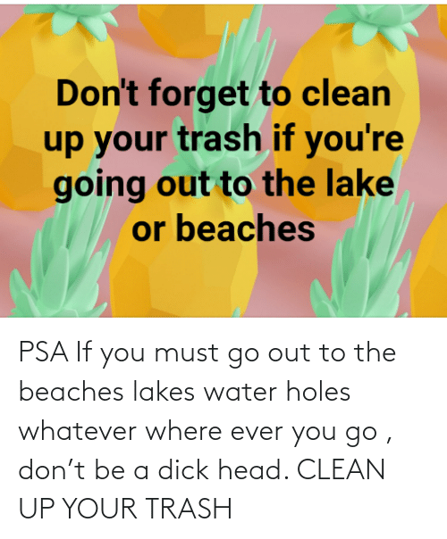 You Go: PSA If you must go out to the beaches lakes water holes whatever where ever you go , don't be a dick head. CLEAN UP YOUR TRASH