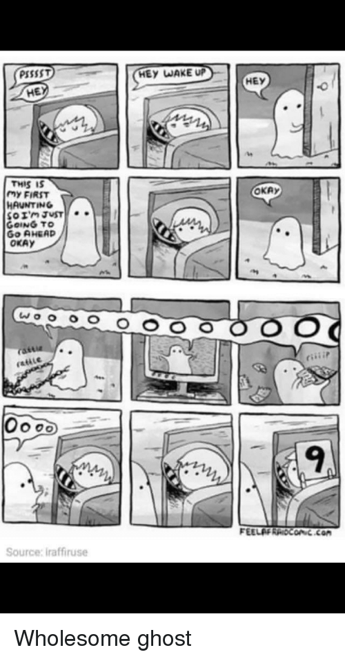 Ghost, Okay, and Wholesome: PSSSST  HEY WAKE UP  HEY  HE  THIS IS  My FIRST  HAVNTING  OKAY  GoING TO  Go AHEAD  OKAY  riitir  9  FEELAFRIDCOMC.CO  Source: Iraffiruse Wholesome ghost