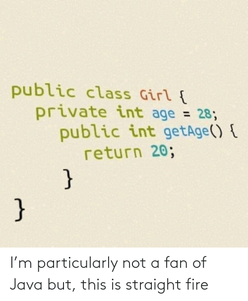 Fire: public class Girl {  private int age = 28;  public int getAge() {  return 20;  %3D  } I'm particularly not a fan of Java but, this is straight fire