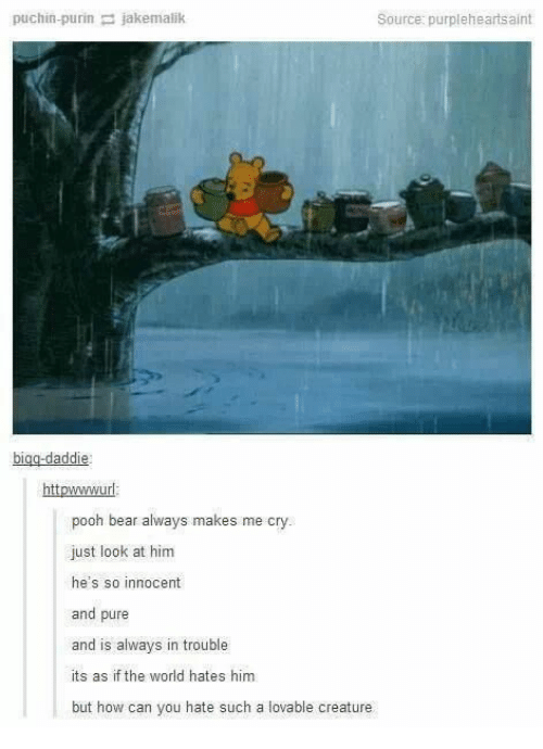 innocent: puchin-purin jakemalik  Source: purpleheartsaint  bigg-daddie  httpwwwurl  pooh bear always makes me cry.  just look at him  he's so innocent  and pure  and is always in trouble  its as if the world hates him  but how can you hate such a lovable creature
