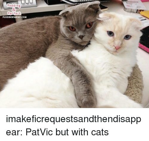 Cats, Tumblr, and Blog: Puddin  PUDDINGPARFAIT .COM imakeficrequestsandthendisappear:  PatVic but with cats