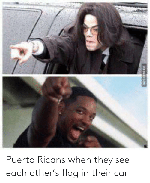 each other: Puerto Ricans when they see each other's flag in their car