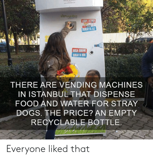 Dogs, Food, and Istanbul: PugEdoN  COPE ATMA  BURAYA AT  BOSA DOKME  BURAYA DOK  THERE ARE VENDING MACHINES  IN ISTANBUL THAT DISPENSE  FOOD AND WATER FOR STRAY  DOGS. THE PRICE? AN EMPTY  RECYCLABLE BOTTLE Everyone liked that