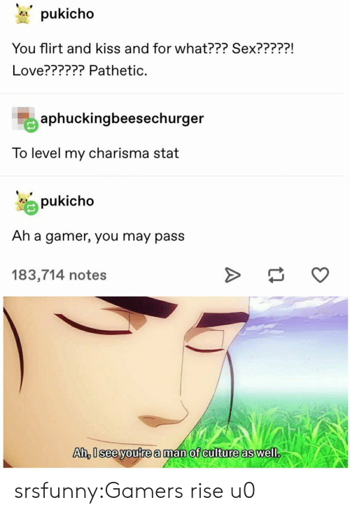 Love, Sex, and Tumblr: pukicho  You flirt and kiss and for what??? Sex?????  Love?????? Pathetic.  aphuckingbeesechurger  To level my charisma stat  pukicho  Ah a gamer, you may pass  183,714 notes  Ai, seeyoutre aman of anilture as well srsfunny:Gamers rise u0