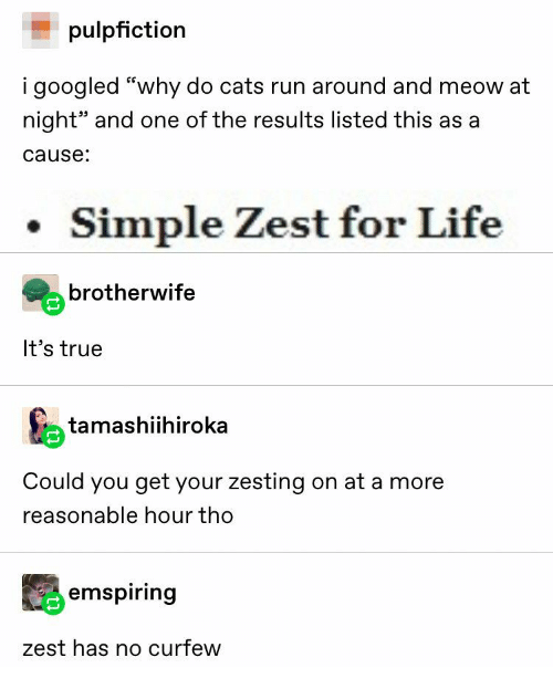 """Cats, Life, and Run: pulpfiction  i googled """"why do cats run around and meow at  night"""" and one of the results listed this as a  cause:  Simple Zest for Life  brotherwife  It's true  tamashiihiroka  Could you get your zesting on at a more  reasonable hour tho  emspiring  zest has no curfew"""