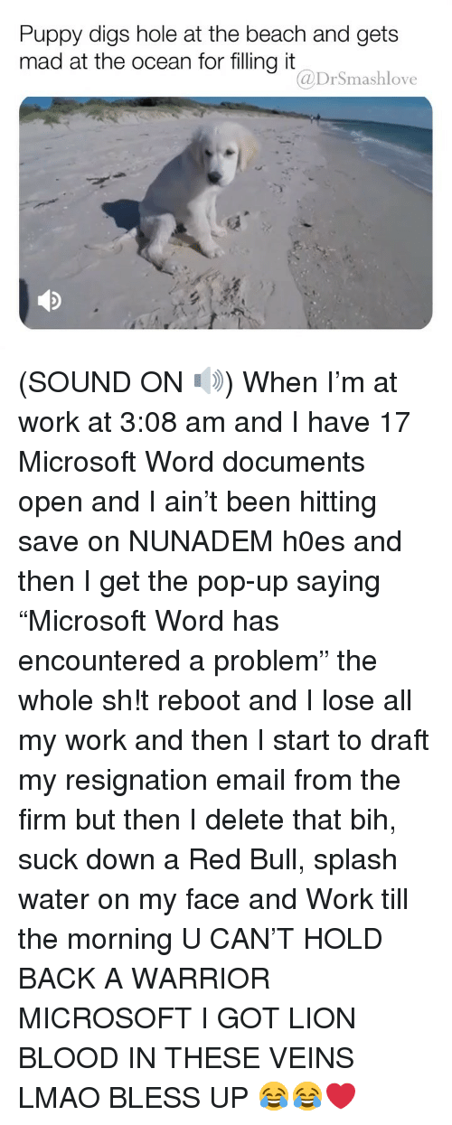 "Bless Up, Lmao, and Memes: Puppy digs hole at the beach and gets  mad at the ocean for filling it  @DrSmashlove (SOUND ON 🔊) When I'm at work at 3:08 am and I have 17 Microsoft Word documents open and I ain't been hitting save on NUNADEM h0es and then I get the pop-up saying ""Microsoft Word has encountered a problem"" the whole sh!t reboot and I lose all my work and then I start to draft my resignation email from the firm but then I delete that bih, suck down a Red Bull, splash water on my face and Work till the morning U CAN'T HOLD BACK A WARRIOR MICROSOFT I GOT LION BLOOD IN THESE VEINS LMAO BLESS UP 😂😂❤️"