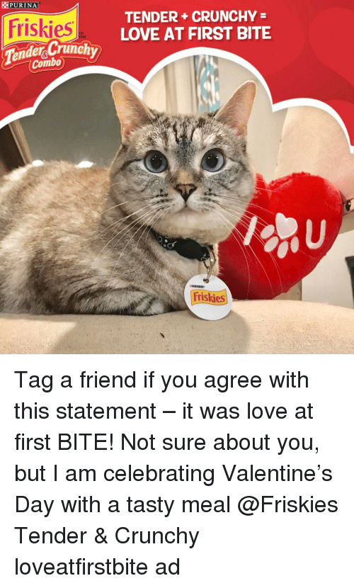 Memes, Crunchy, and 🤖: PURINA  Friskies  der Crunch  Combo  TENDER CRUNCHY  LOVE AT FIRST BITE  Friskies Tag a friend if you agree with this statement – it was love at first BITE! Not sure about you, but I am celebrating Valentine's Day with a tasty meal @Friskies Tender & Crunchy loveatfirstbite ad