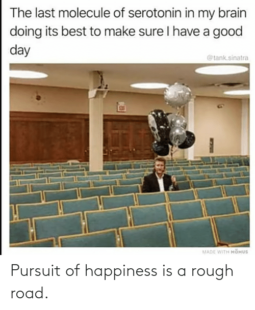 Rough: Pursuit of happiness is a rough road.