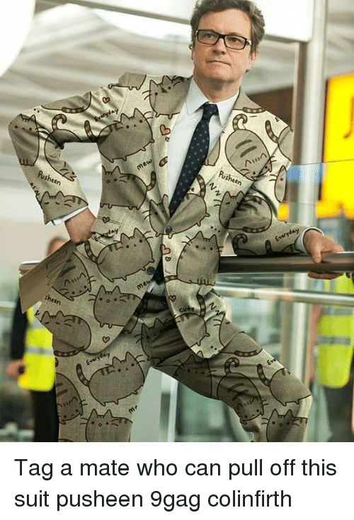 Tag A Mate: Pusheen  Pusheen  me  sheen  Z. Tag a mate who can pull off this suit pusheen 9gag colinfirth