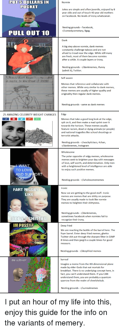 4chan, 9gag, and Animals: PUT 5 DOLLARS IN  POCKET  Normie  Jokes are simple and often juvenile, enjoyed by 8  year olds and out of touch 40 year old mothers  on Facebook. No levels of irony whatsoever  Nesting grounds Facebook  r/comedycemetary, 9gag.  PULL OUT 10  mememenerator.net  Dank  A big step above normie, dank memes  constantly challenge taboos and are not  afraid to tread near the edge. While still many  are fresh, most of them become normies  after a while. A couple layers or irony.  Nesting grounds- r/dankmemes, Ifunny  (admit it), Twitter.  Self aware  Memes that reference and collaborate with  other memes. While very similar to dank memes,  these memes are usually of higher quality and  originality then regular dank memes.  Nesting grounds - same as dank memes  25 AMAZING CELEBRITY WEIGHT CHANGES Edgy  Memes that take a good long look at the edge,  spit on it, and then make a mad sprint over it  towards the horizon. These memes usually  feature racism, dead or dying animals (or people)  and national tragedies like school shootings or  terrorist attacks.  Nesting grounds-r/wac  r/dankmemes, Instagram  kytictacs, 4chan,  Wholesome  The polar opposite of edgy memes, wholesome  memes seek to brighten your day with messages  of love, self worth, and determination. Only men  with a heightened level of intelligence are able  to enjoy such positive memes.  WAN  TO LOV  AND SUPRORT  YO  Nesting grounds - r/wholesomememes  ronic  FART NIGGAS  Now we are getting to the good stuff. Ironic  memes are memes that are shitty on purpose  They are usually made to look like normie  memes to heighten their shittyness.  LIKE  Nesting grounds r/dankmemes,  sometimes Facebook when normies fail to  recognize their irony  OOPS-I SHITTED  IM PUSSVE  Deep fried  We are reaching the bottle of the barrel here. The  fryer barrel. Enter deep fried memes, ghetto  Twitter shit put through the sharpen filter in GIMP  8 times and then jpeg'd a couple times for good  measure  Nesting gr