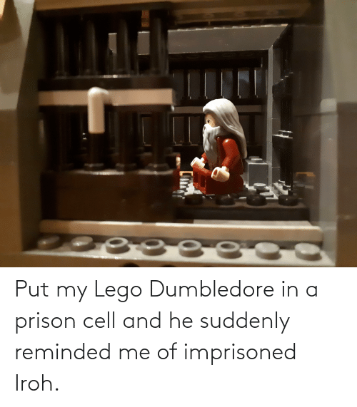 suddenly: Put my Lego Dumbledore in a prison cell and he suddenly reminded me of imprisoned Iroh.