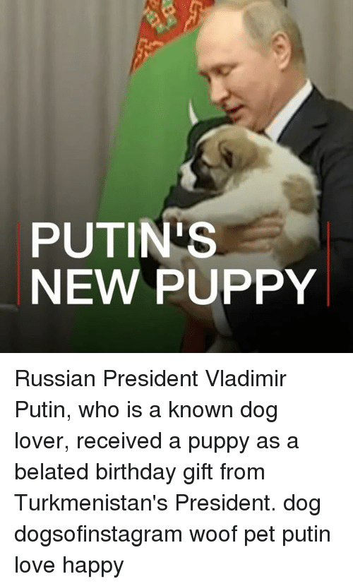 Birthday, Love, and Memes: PUTIN'S  NEW PUPPY Russian President Vladimir Putin, who is a known dog lover, received a puppy as a belated birthday gift from Turkmenistan's President. dog dogsofinstagram woof pet putin love happy