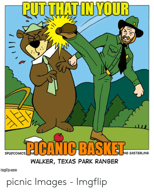 Walker Texas: PUTTHAT IN YOUR  ICANIC BASKET  SPUDCOMICS  NIE EASTERLING  WALKER, TEXAS PARK RANGER  imgfip com picnic Images - Imgflip