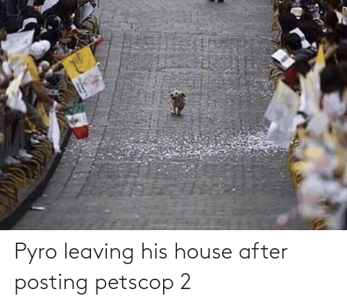 leaving: Pyro leaving his house after posting petscop 2