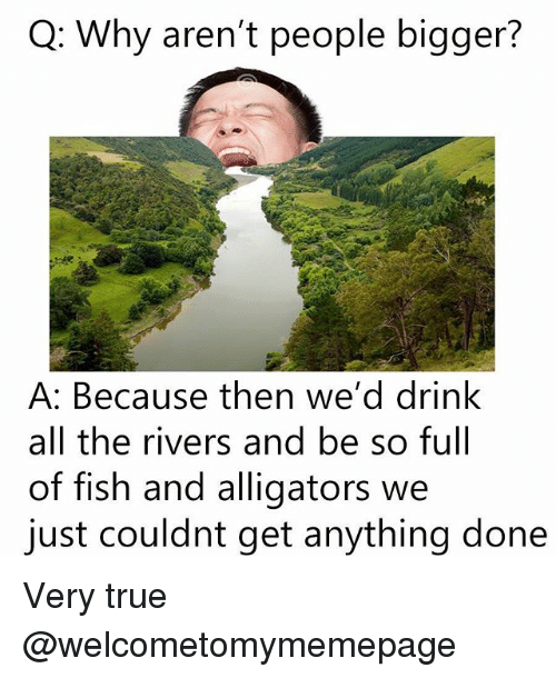 Memes, True, and Fish: Q: Why aren't people bigger?  A: Because then we'd drink  all the rivers and be so full  of fish and alligators we  just couldnt get anything done Very true @welcometomymemepage