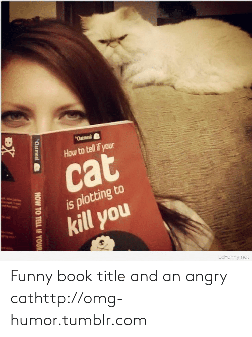 Angry Cat: Qatmeal  How to tell if your  cat  is plotting to  kill you  LeFunny.net  Oatmeal  HOW TO TELL IF YOUR  BX Funny book title and an angry cathttp://omg-humor.tumblr.com