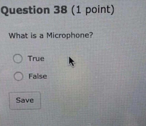 True, What Is, and What Is A: Question 38 (1 point)  What is a Microphone?  True  O False  Save