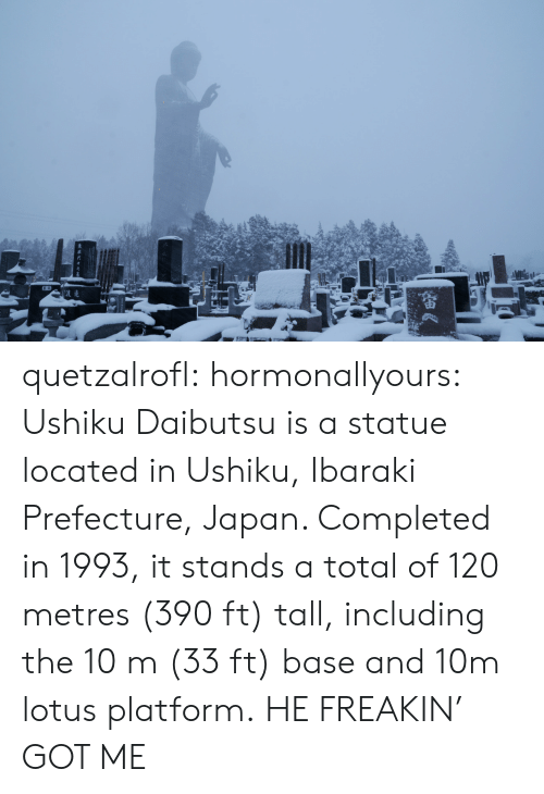 Lotus: quetzalrofl: hormonallyours:  Ushiku Daibutsu is a statue located in Ushiku, Ibaraki Prefecture, Japan. Completed in 1993, it stands a total of 120 metres (390 ft) tall, including the 10 m (33 ft) base and 10m lotus platform.  HE FREAKIN' GOT ME