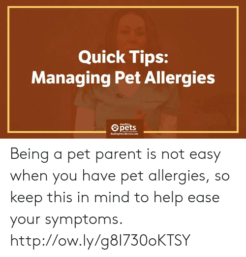 Memes, Pets, and Help: Quick Tips:  Managing Pet Allergies  pets  HealthyPets Mercela.com Being a pet parent is not easy when you have pet allergies, so keep this  in mind to help ease your symptoms.   http://ow.ly/g8I730oKTSY