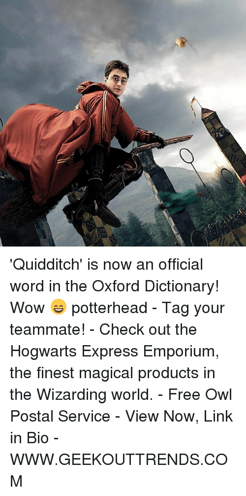 Memes, Wow, and Dictionary: 'Quidditch' is now an official word in the Oxford Dictionary! Wow 😄 potterhead - Tag your teammate! - Check out the Hogwarts Express Emporium, the finest magical products in the Wizarding world. - Free Owl Postal Service - View Now, Link in Bio - WWW.GEEKOUTTRENDS.COM