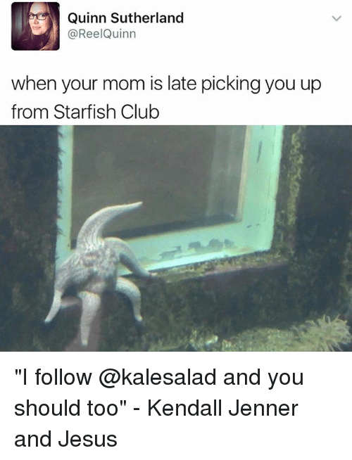 """Starfishing: Quinn Sutherland  ReelQuinn  when your mom is late pickingyou up  from Starfish Club """"I follow @kalesalad and you should too"""" - Kendall Jenner and Jesus"""