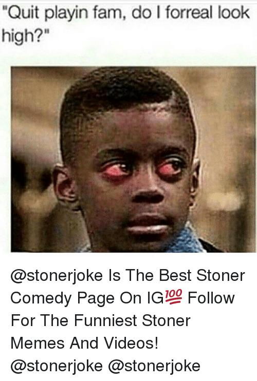 """Fam, Memes, and Videos: """"Quit playin fam, do I forreal look  high?"""" @stonerjoke Is The Best Stoner Comedy Page On IG💯 Follow For The Funniest Stoner Memes And Videos! @stonerjoke @stonerjoke"""