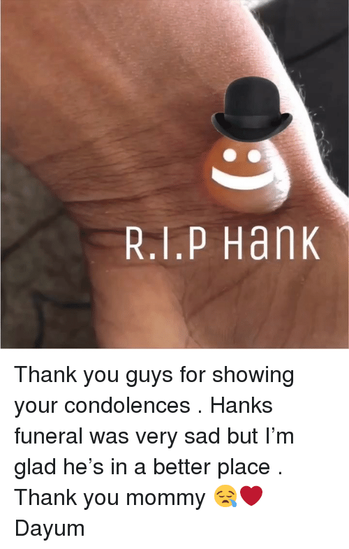 Memes, Thank You, and Condolences: R.1.P Hank Thank you guys for showing your condolences . Hanks funeral was very sad but I'm glad he's in a better place . Thank you mommy 😪❤️ Dayum