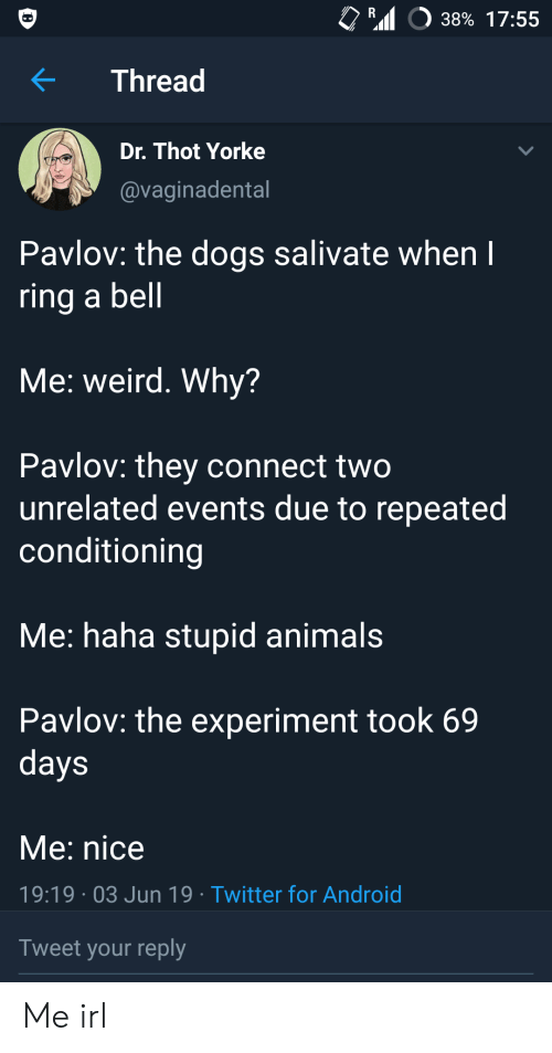 Repeated: R  38% 17:55  Thread  Dr. Thot Yorke  @vaginadental  Pavlov: the dogs salivate when I  ring a bell  Me: weird. Why?  Pavlov: they connect two  unrelated events due to repeated  conditioning  Me: haha stupid animals  Pavlov: the experiment took 69  days  Me: nice  19:19 03 Jun 19 Twitter for Android  Tweet your reply Me irl